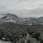 Exteriores Nevados.