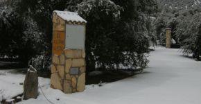 (Español) Invierno 2010 – 1