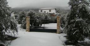 (Español) Invierno 2010 – 2