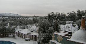 (Español) Invierno 2010 – 6