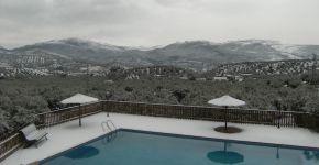 (Español) Invierno 2010 – 8