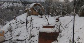 (Español) Invierno 2010 – 9